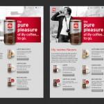 Responsive Design en Español