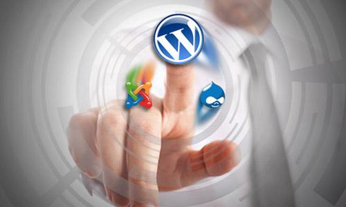 CMS continuará reinando la Web
