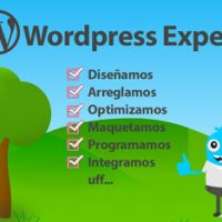 wordpress experto Peru